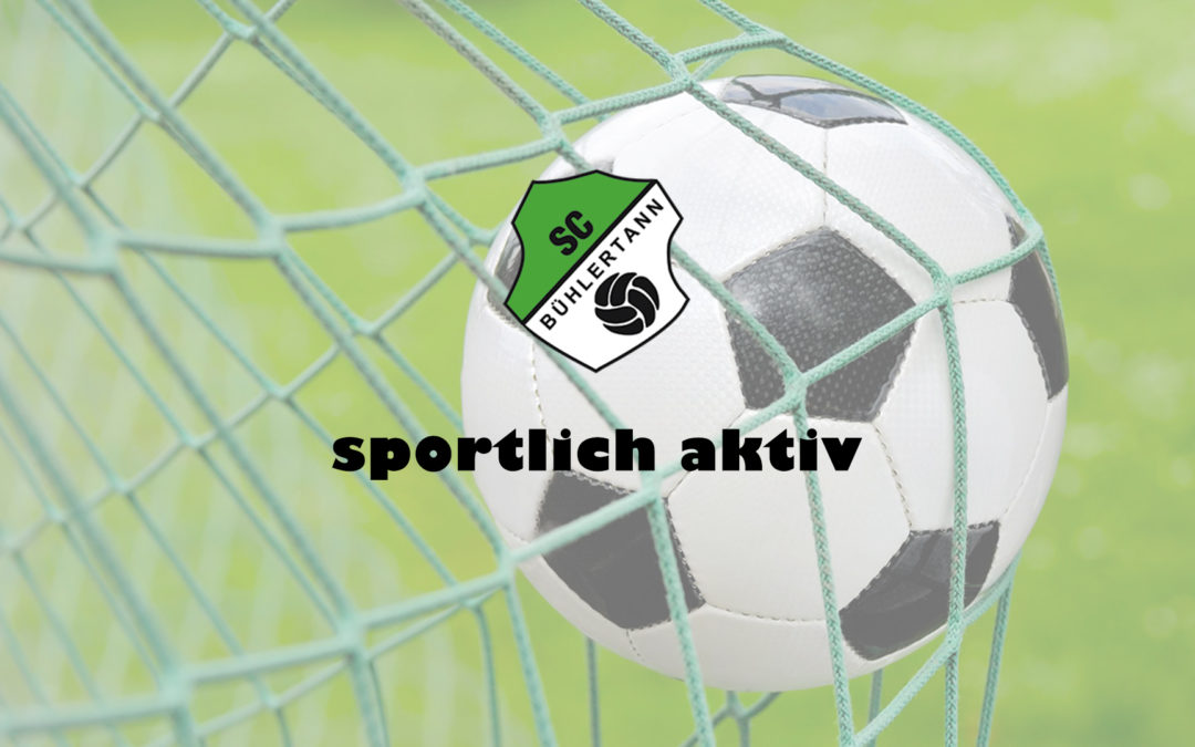 E 3 erfolgreich gegen TSV Michelfeld II
